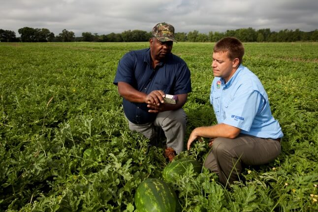 UF/IFAS Columbia County Extension agent Mace Bauer (right) and Columbia County watermelon farmer Donell Gwinn examine a soil moisture monitoring device.  UF/IFAS Photo by Tyler Jones.
